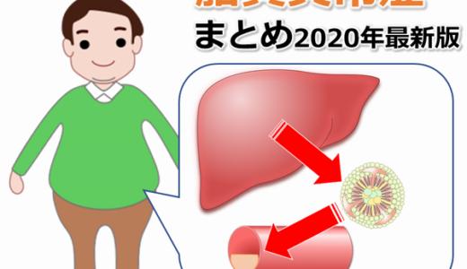 【代謝】脂質異常症の原因・診断・食事・薬物療法【ガイドラインまとめ】【国試対策】